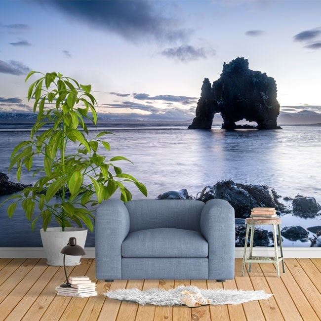 Photo wall murals rock dinosaur Iceland