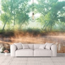 Photo wall murals sunset on the Lake