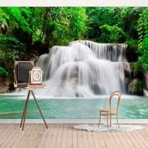 Photo wall murals waterfalls nature