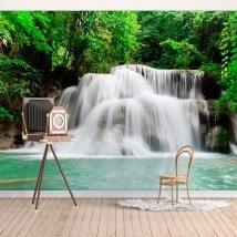 Photo wall murals waterfalls nature