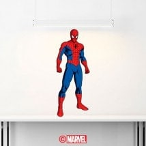 Decorative vinyl Spiderman