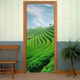 Stickers for doors tea plantation