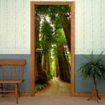 Decorative vinyl door way of Sequoias