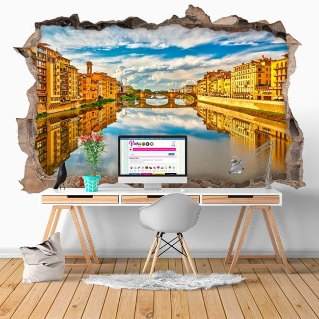 Vinyl 3D River Arno Florence Italy