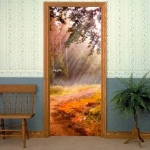 Doors vinyls Sunbeams In Nature