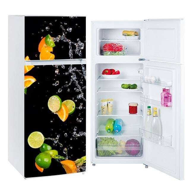 Vinyls for refrigerators oranges and lemons