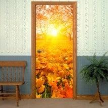 Vinyl for doors at sunset in autumn