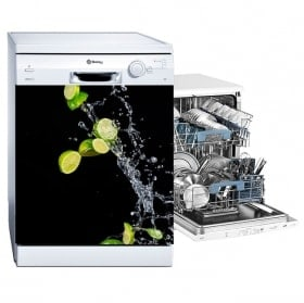 Vinyls lemons splash dishwasher