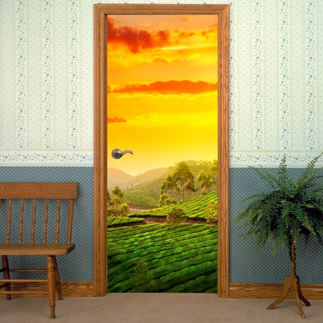 Decorative vinyl doors India sunset in the countryside