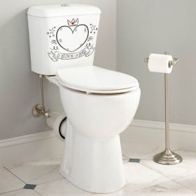 Vinyls for toilets and bathrooms the queen's armchair