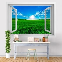 Vinyl walls sunset in the field 3D