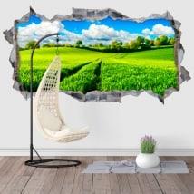 Decorative vinyl 3D nature