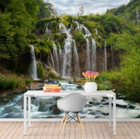Wall murals waterfalls in the forest