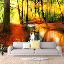 Wall mural sunset in the forest in autumn
