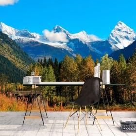 Wall Murals Canada Banff national park