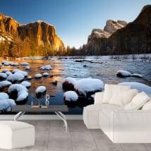 Wall Murals Yosemite National Park