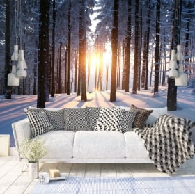 Wall murals sunset trees winter