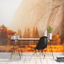 Wall murals Yosemite Sierra Nevada California