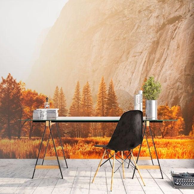 Wall murals Yosemite Sierra Nevada California