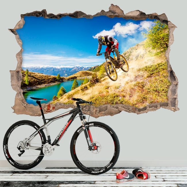Decorative vinyl mountain bike 3D