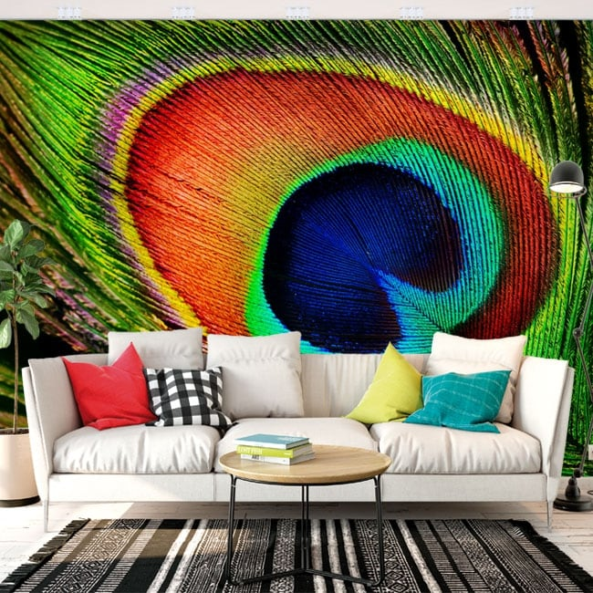 Wall murals Peacock feather