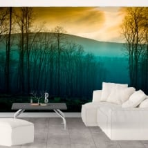 Vinyl wall murals trees nature