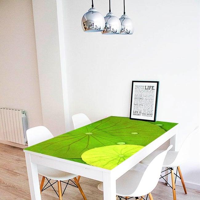 Decorative vinyl tables lily pads