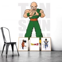 Adhesive vinyl dragon ball ten shin han