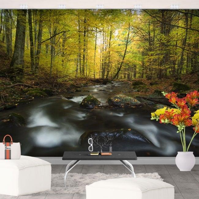 Vinyl wall murals river nature in autumn