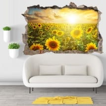 Vinyl hole wall sunset field of sunflowers 3d