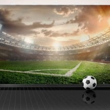Vinyl wall murals panoramic football stadium