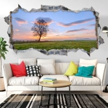 Vinyl hole wall sunset in the field 3d