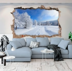 Vinyl hole wall nature in winter 3d