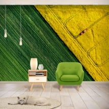 Vinyl murals colors nature