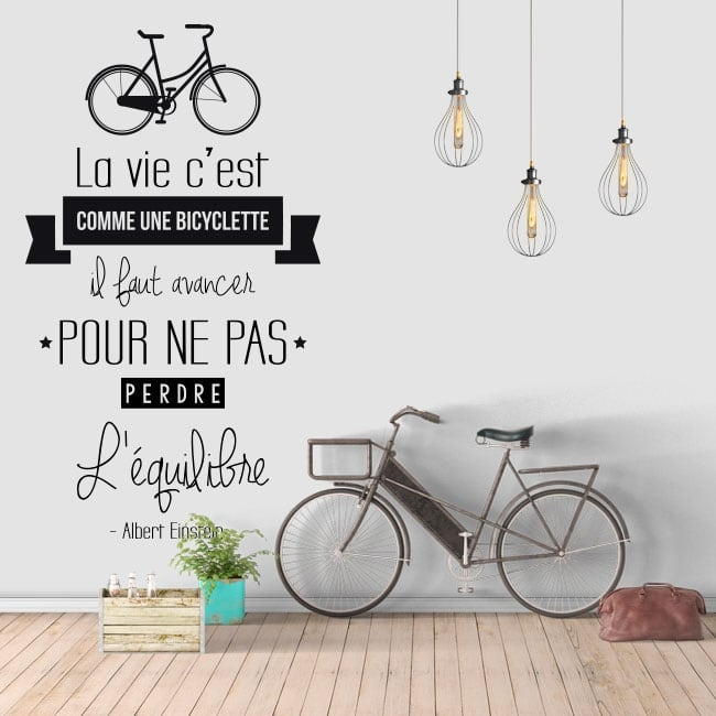 Vinyl phrase in french life is like riding a bicycle