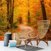 Murals of vinyl trees in autumn
