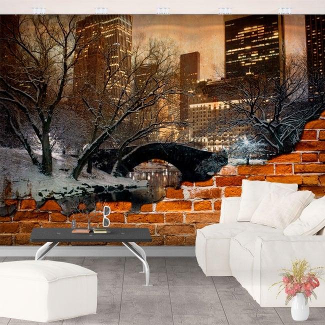 Murals central park new york broken wall effect