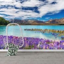 Wall murals lake tekapo new zealand