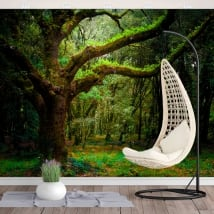 Vinyl wall murals forest trees