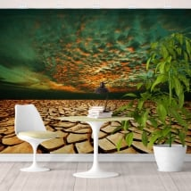 Vinyl wall murals drought land