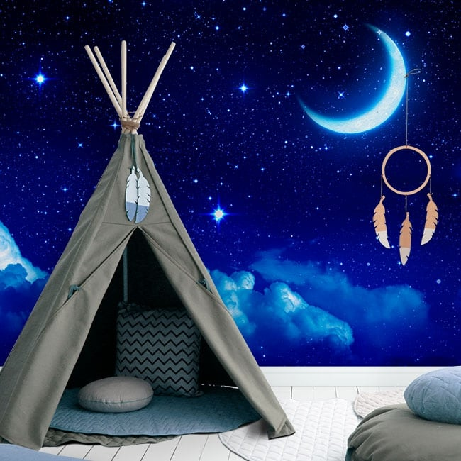 Vinyl wall murals moon and stars