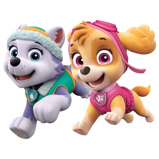 Decorative vinyl everest and skye the paw patrol