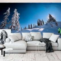 Vinyl wall murals pines in the snow