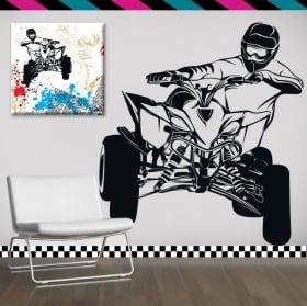 Decorative vinyl and stickers quad bike