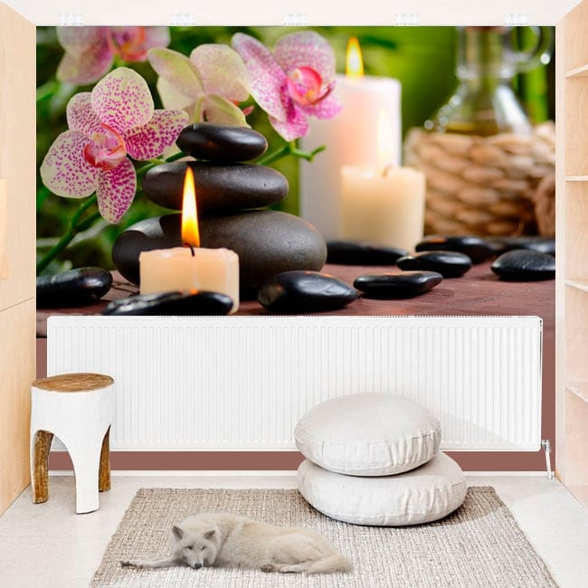 Vinyl photo murals zen walls