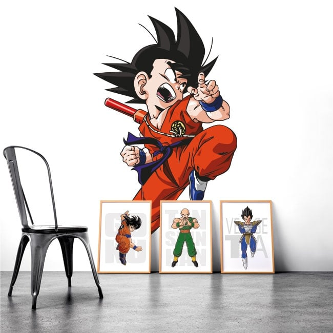 Vinyl and stickers dragon ball