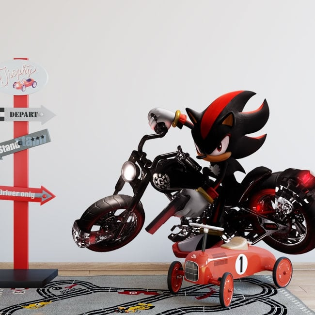 Vinyl and stickers sonic video game with motorbike
