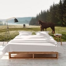 Wall murals horses in the field