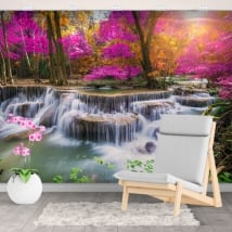 Wall mural waterfalls in the forest in autumn