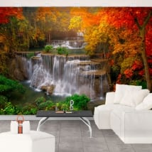 Wall murals with waterfalls and trees in autumn